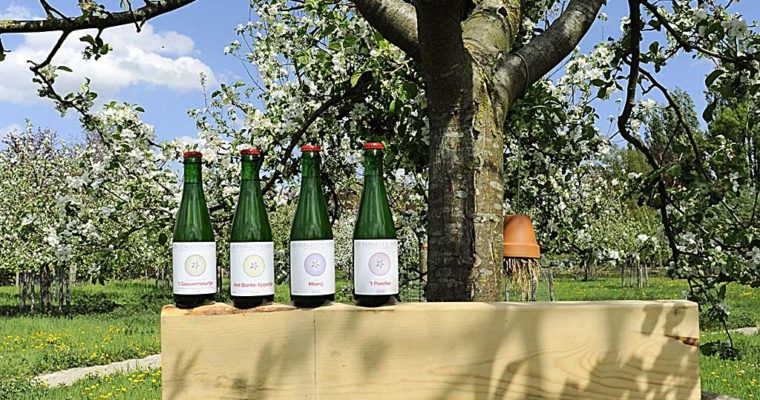North Brabant celebrates the unforgettable apple